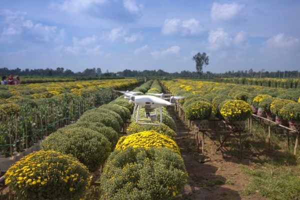 Artificial intelligence and precision farming: does efficiency mean sustainability?